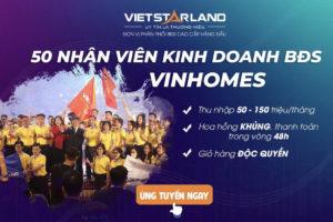 Vietstarland tuyển dụng Sale BDS